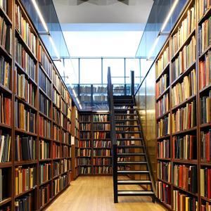 Библиотеки Вейделевки